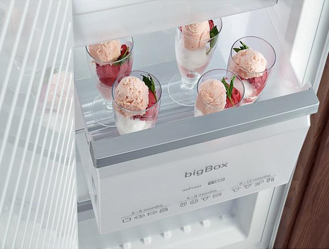 Обзор морозильной камеры SIEMENS GI38NP60